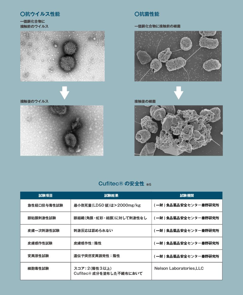 フィルムの抗ウイルス・抗菌性能や安全性を紹介しています。